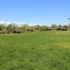 Blick von der Weide auf die Ferienhäuser